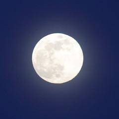 Spring Supermoon,Aberdeen_Mar 19_406 (Alan Longmuir.) Tags: grampian aberdeen misc sky moon springsupermoon