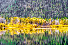 Reflections . . . (Charles Patrick Ewing) Tags: landscape landscapes nature natural yellow tree trees lake lakes mountain mountains grass green water reflection reflections nikon colorful colors great beauty beautiful art artistic fave faves sun sunshine outdoor new all everything best today