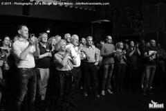 2019 Bosuil-Het publiek bij Steady State en The Animals 19-ZW