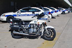 Dallas PD_3707 (pluto665) Tags: dpd officer motor motorcycle cop bike traffic enforcement