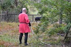 EEF_7680 (efusco) Tags: boar medieval spear brambleschoolearteofthehunt bramble schoole military arts academy florida ferel hog pig