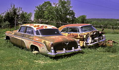 Desoto's im Garten (olds.wolfram) Tags: desoto garten gras baum olds1 rusty rostig rost car auto oldtimer coche voiture firedome