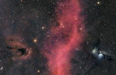M 78, Barnard's Loop, LDN 1622 (anteroalbersdörfer) Tags: m78 ldn 1622 barnards loop orion deepsky