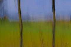 Abstracto_XT26959_1 (Alberto Estella) Tags: fuji fujifilm fujinon fujifilmx xt2 1024 cielo sea marina dom amanecer rocks paisaje larga exposición largaexposicion llargaexposicio clouds nublado mañana ligero mar catalunya puesta de sol frío hielo lago montaña agua mirador costa arena nubes roca bosque campo reflejos océano bahía playa hermoso azul montañas barcelona panorámico españa europa albertoestella paysage anochecer