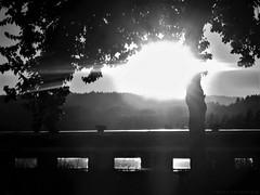 18h18 - 6:18 p.m. (Nicole Thévenon) Tags: soleil sun nuit night train soir evening noiretblanc nature nocturnal nocturne bw blackandwhite art mood mystère monochrome mystery montain montagne tree arbre