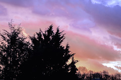 Cold winter sunset (kiareimages1) Tags: sunsets sky winter landscapes light colors trees clouds belgium charleroi