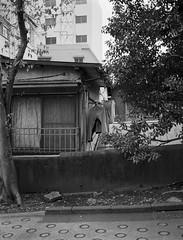 Drying (RunnyInHongKong) Tags: kodaktmaxdeveloper mediumformat opticfilm120 akasaka minatoku japan selfdevelop tokyo kodaktmax400 silverfast fujifilmga645 film 6x45