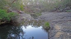 Dogtrap Creek_4 (Tony Markham) Tags: dogtrapcreek tributary bargoriver tahmoorgorge tahmoorcanyon cliffs sandstone cave overhang mermaidspool