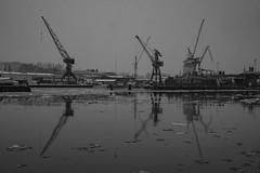 Cold River (Rudi Pauwels) Tags: 2019onephotoeachday goteborg gothenburg gothiariver cold winter snow reflections speglingar bw svartvit cranes gray monochrome blackandwhite tamron 18270mm tamron18270mm nikon d7100 nikond7100