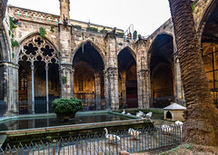 Barcelone-144 (bonacherajf) Tags: barcelona barcelone catalogne catalunya espagne espania spagna cloitre oies cathédrale