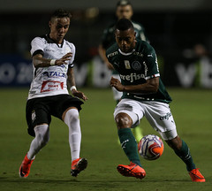 Palmeiras x Bragantino (11/02/2019) (sepalmeiras) Tags: bragantino campeonatopaulista pacaembu palmeiras sep sériea1 borja