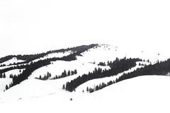 Snow Covered Terminal Moraine, Grand Teton National Park (Ann Kruetzkamp) Tags: blackandwhite terminalmoraine hills minimalist minimal negitivespace yellowstone winter wyoming montana snow nationalparks tetonnationalpark jacksonhole mountain mountains snowmobiling snowmobile ride kruetzkamp ann annkruetzkamp travel nature adventure trip vacation photography landscape snowscape panorama canon 5d 5dmark3 5dmarkiii markiii mark3 canonphotography epic beautiful conservation ice cold