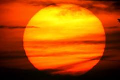 Sunset (Scorpion-66) Tags: sunset tramonto sun colors yellow orange red canon760d celestronc6