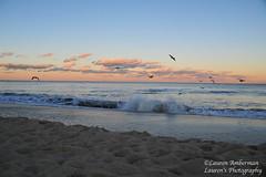 Sunset walk (lauren3838 photography) Tags: laurensphotography lauren3838photography landscape sunset beach sand waves seaside ocean atlanticocean delaware de nikon rehobothbeach rehoboth dusk clouds sky surf seagulls nature ilovenature delagram d700 tamron tamron2875mm28