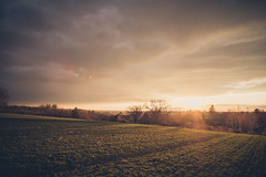 Sunset in the backyard (BalintL) Tags: spring sunset orange green grass field wheat agriculture village sun sky skyscape landcape flare fujifilmxt20 samyang12mmf2 uwa