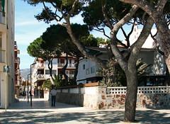 IMG_9485-1 (maria.urman) Tags: platja daro spain españa cataluña costa brava