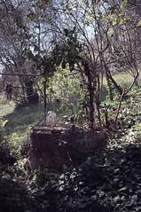 190322 il vecchio pozzo (enricospinozzi) Tags: pozzo film analog enricospinozzi