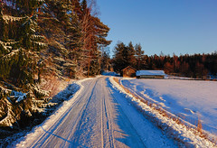 Winterscape (Joni Mansikka) Tags: winter nature outdoor forest field cabin snow sky road landscape masku suomi finland