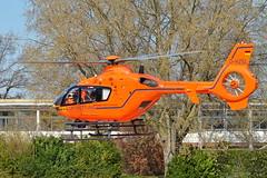 D-HZSL Eurocopter EC135 Luftreitung (czerwonyr) Tags: dhzsl eurocopter ec135 luftreitung