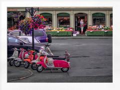malton market (Mallybee) Tags: colourful streetphoto street 12mp m43 scooter malton market fruit lumix gf3 mallybee flowers shops 425mm f17
