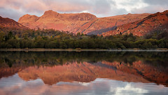 red langdales (akh1981) Tags: elterwater beautiful benro cumbria countryside calm nikon nisi nature nisifilters nationalpark nationalheritage nationaltrust nationalheritagesite mountains langdale walking water reflections travel trees tranquil tamron valley river morning uk unesco outdoors