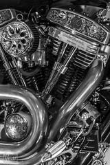 "Tribute_MotoMadrid_077-BN (byJMdF) Tags: artesania cordobesa artesanía custom bikes motorcycle moto motocicleta ""craftwork cordobese"" craftwork blancoynegro blackwhite salón motomadrid 2019 salónmotomadrid2019 harley davidson softail 1340 1995 harleydavidsonsoftail1340 harleydavidsonsoftail13401995 hdsoftail13401995 hd motomadrid2019"