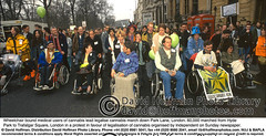 Wheelchairs Lead March (hoffman) Tags: balloon banner british britishisles cannabis crowd decriminalise demonstration disability disabled dope drug drugs eec england english eu europe europeanunion female greatbritain handicap handicapped hash horizontal lady march muscularschlerosis muscularsclerosis pot protest rally spliff uk unitedkingdom wheelchair woman women 181112patchingsetforimagerights london
