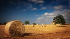 Mallorquinische Landschaft (fotobagaluten.de) Tags: mallorca malle balearen landschaft landscape ländlich rural