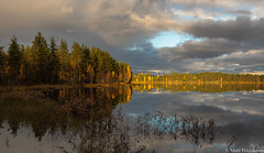 Ilta-aurinko, Evening sunshine (NI5A9133LR) (pohjoma) Tags: iltaaurinko maisema ruska syksy canoneos5dmarkiv finland canonef24105mmf4lisusm autumncolors autumn fall evening sunshine sky cloud water lake forest woods ilomantsi