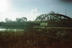 IMG_20190124_0012 (.ultraviolett) Tags: film 35mm analogue yashica