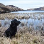 Mamba, Loch nan Gillean thumbnail