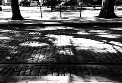 (Jamal El) Tags: street smartphone snap bw blackwhite black white brussels brussel bruxelles belgique belgium belgie mensen straat wandeling balade walking shadows sunny contrast back rue promenade waiting attendre attendant tramway rails tram noir blanc nb noirblanc pavement trotoire lines graphism graphic graphique