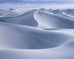 Serenity (Michael Bollino) Tags: deathvalley sand sanddunes dunes dry desert nationalpark bluehour twilight travel landscape nature nikon induro outside morning sunrise light