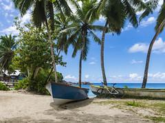 """""""Two-masted"""" boats / Двухмачтовые лодки :)) (dmilokt) Tags: природа nature пейзаж landscape море sea пляж beach песок sand пальма palm небо sky облако cloud dmilokt boat лодка nikon d850"""