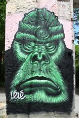 . (just.Luc) Tags: green groen grün vert gorille gorilla urbanart streetart graffiti grafitti bordeaux gironde nouvelleaquitaine france frankrijk frankreich francia frança darwin