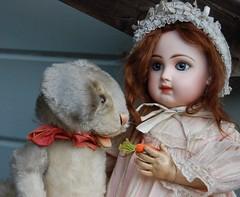 Winifred (Emily1957) Tags: jumeau dolls doll antique steiff light naturallight nikond40 nikon kitlens bébé pet bunny rabbit