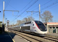 TGV POS 4419 en UM (SylvainBouard) Tags: tgvpos railway train lyria cff sncf