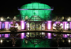 Eingangschauhaus, Winterlichter, Palmengarten, Frankfurt, Germany (JH_1982) Tags: eingangschauhaus lake pool reflection reflections architecture building dome cuppola glass winterlichter palmengarten winter christmas trees decoration lights light art kunst installation colour color colours colors park garden artistic künstler farbe glow glowing leuchten dunkel dark darkness nacht night nuit noche notte 晚上 夜 ночь beleuchtet beleuchtung lumière luz 光 свет evening frankfurt frankfurter francfort fráncfort francoforte meno 美因河畔法兰克福 フランクフルト フランクフルト・アム・マイン франкфурт hessen hesse germany deutschland allemagne alemania germania