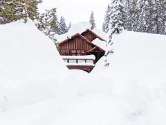 Snow filled driveway at Serene Lakes-01 3-1-19