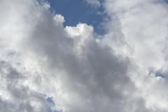 Cottony Clouds (Modkuse) Tags: provia fujiprovia fujifilmxt2provia fujifilmxt2proviasimulation clouds cloudscape cloudyday sky skyscape brightsky dramaticsky nature natural art artphotography photoart fineartphotography fineart fujifilm fujifilmxt2 xt2 fujinon 80mm xf80mmf28rlmoiswrmacro fujinonxf80mmf28rlmoiswrmacro