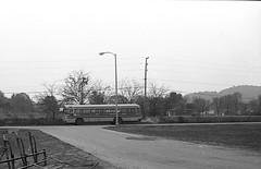 1980's School bus Metro Nashville (Alvin Sangma Photography) Tags: canonae1program nashville 80s sangma 1987 vintage family blackandwhite film familyphotos