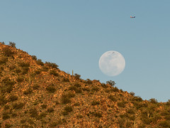 Serendipity (Ron Drew) Tags: nikon d850 arizona scottsdale desert moon plane bird cactus saguaro sunset goldenhour fullmoon supermoon serendipity hill landscape mcdowellmountains outdoor flight