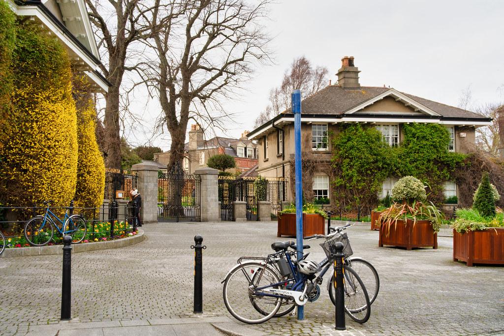 THE BOTANIC GARDENS IN GLASNEVIN DUBLIN [ TODAY I USED A VOIGTLANDER 40mm F1.2 LENS]-150576
