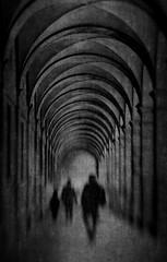 City of lost souls (Lucretia My Reflection) Tags: lensbaby sweet50 tiltlens selectivefocus blur bokeh seeinanewway street streetphotography shadow shades texture city cityscape blackandwhite bw surreal surrealphoto haunting creepy lucca loggia lodge