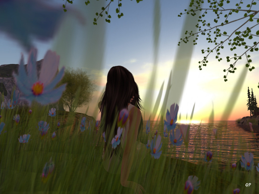 The World's Best Photos of go and secondlife - Flickr Hive Mind