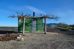 Marjal de Pego 16 (dorieo21) Tags: tree casa marjal marsh pego house