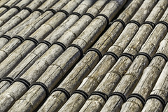 Bamboo Roof (Mabry Campbell) Tags: 2017 hermannpark houston japanese october texas usa bamboo image nature pattern photo photograph roof f22 mabrycampbell june 2012 june172012 201206171422 85mm ¹⁄₃₂₀sec 100 ef85mmf18usm