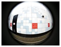 No parking (leo.roos) Tags: sign bord wall muur door deur verbodenteparkeren noparking denhaag grotemarktstraat thehague a7s fisheye lensbabyfisheyeoptic1240 lensbabyscout amount darosa leoroos