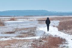 Winter river 2 (ldziedziul) Tags: winter river podlasie