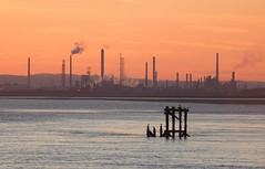 Stanlow dawn 01 feb 19 (Shaun the grime lover) Tags: mersey river sunrise winter stanlow oil refinery eastham dawn colour color orange tide wirral cheshire industrial chimneys sky